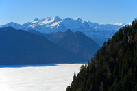 Inversion with a sea of fog over lake Alpnachersee, view at the Uri Alps, Alpnach, Switzerland