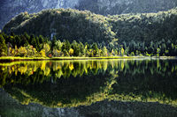 Lake Swan, Schwansee, Upper Bavaria, Germany