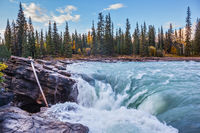 Scenic and powerful Athabasca Falls
