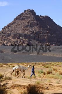 Tuareg Nomade auf der Suche nach einer Weidefläche