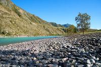Siberian river Katun in Altai mountains