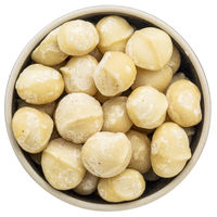 macadamia nuts in isolated bowl