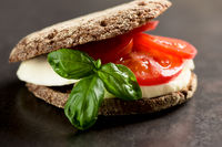 Sandwich with mozzarella tomatoes and rye bread