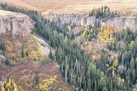 sandstone cliff, aspen and spruce in Colorado