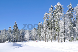 Winter im Bayerischen Wald im Arbergebiet