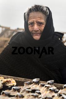 Ältere Frau verkauft Fisch am Strand von Nazare, Portugal, Europa