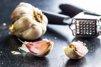 Fresh garlic and garlic presser.
