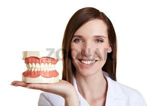Zahnärztin mit Gebissmodell auf Hand