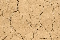 Drought cracks on a mud wall