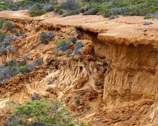 Rugged razor edged erosion in the sandstone on Torrey Pines hillside with collapsing sand