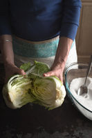 Woman Chinese cabbage divided into two halves for making kimchi