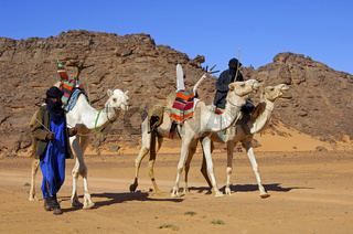 Tuareg Nomaden mit Dromedaren in der Sahara