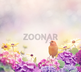 Flower Background with a Yellow Bird
