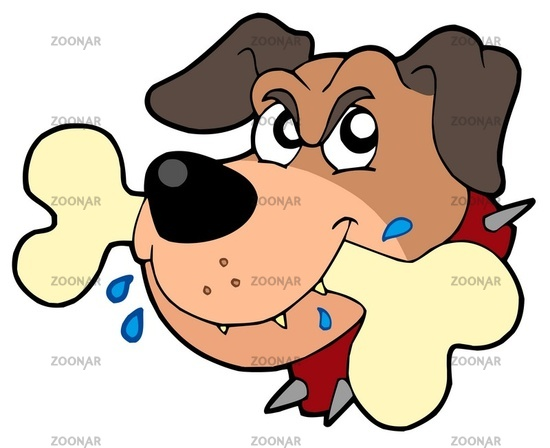 Angry dog face - isolated illustration.