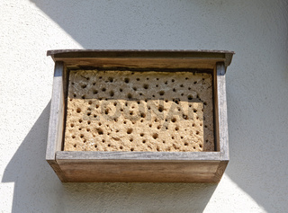 Insect asylum, insect box, an artificial help for nesting and ov