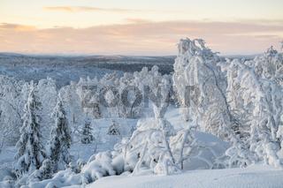 Winterlandschaft, Lappland