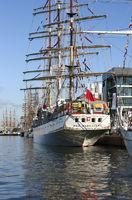 Das polnische Segelschiff Dar Młodzieży