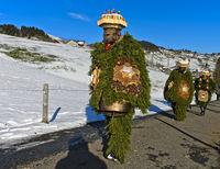 Woodland and Nature Chläuse, Urnäsch Silvesterkläuse procession, Switzerland