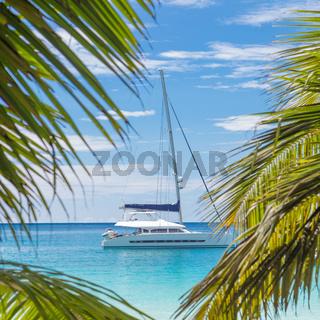 Catamaran sailing boat seen trough palm tree leaves on beach, Seychelles.