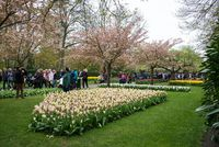 Visitors at the Keukenhof Garden in Lisse, Holland, Netherlands.