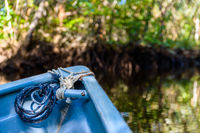 Small blue boat in the mangrove