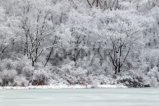 Pierce Lake Snowfall - Illinois