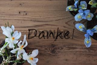 Crocus And Hyacinth, Danke Means Thank You