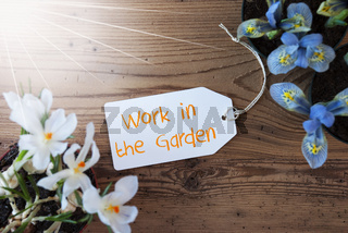 Sunny Flowers, Label, Text Work In The Garden