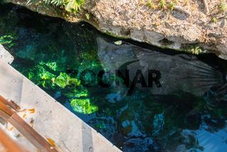 antique Cleopatra pool