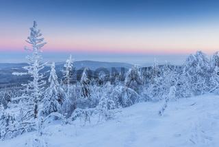 Snow Covered Winter Landscape at Dawn. Grosser Feldberg