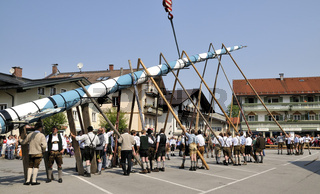 Maibaum aufstellen - setting up the maypole