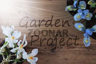 Sunny Crocus And Hyacinth, Text Garden Project