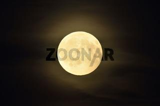 hell leuchtend... Vollmond *Luna luna*