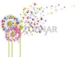 Pusteblumen im Wind illustration
