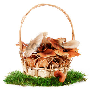 The image of a basket with the mushrooms, isolated, on a white background
