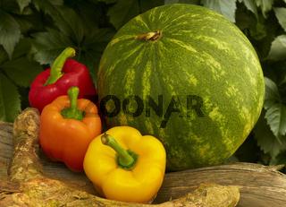 Melone, Paprika und Wurzeln