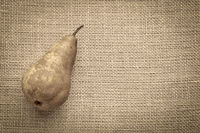 bosc pear on burlap canvas