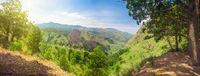 path to Ella Rock in Sri Lanka