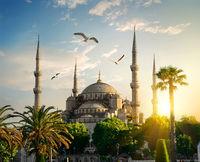 Blue Mosque at summer evening
