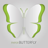 Paper butterfly green