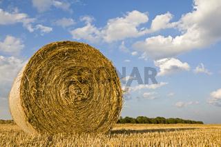 Strohballen rund auf abgeernteten Feld, Bayern, Deutschland, Bales of straw on a grain field, Bavaria, Germany