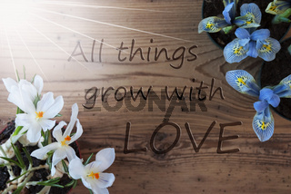Sunny Crocus And Hyacinth, Quote All Things Grow With Love