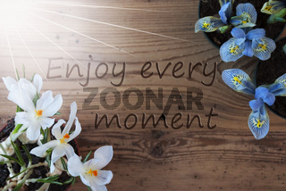 Sunny Crocus And Hyacinth, Quote Enjoy Every Moment