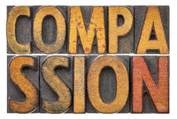 compassion word abstract in wood type