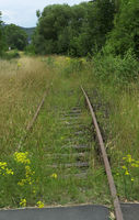 Old vintage railroad accrued with gras