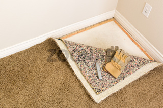 Gloves and Utility Knife On Pulled Back Carpet and Pad In Room.