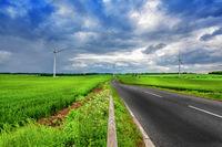 Ecological land