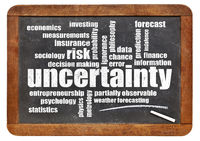 uncertainty and risk word cloud