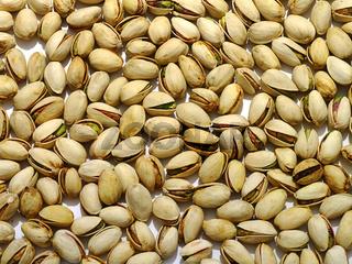 Pistazien / pistachios