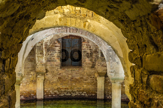 ancient flooded crypt